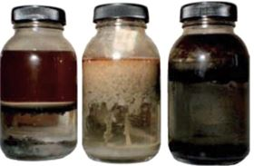 Figure 1: Mixtures of oil and water, containing dirt and bacterial growth.