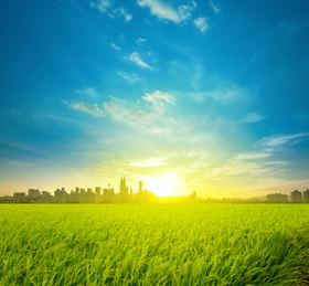 Malaysia, rice fields buffer up to the country's capital city Kuala Lumpur. Picture courtesy of szefei/Shutterstock.com