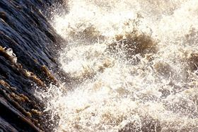 Biofouling in water reverse osmosis remains a severe and recurrent problem. (Image Scott T. O'Donnell/Shutterstock)