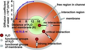 It has been found that 8.75 Å is a critical radius for water channels in diffusion in aromatic polyamide (PA) membranes.