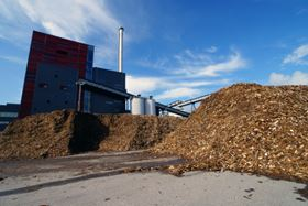 Biomass can be used as a solid fuel.