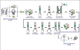 Figure 1. Traditional protein purification process.