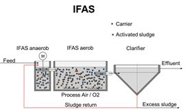 The integrated fixed film activated sludge (IFAS) system.