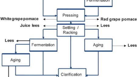 Membrane processing: Natural antioxidants from winemaking by-products