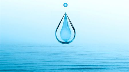 Biomimetic membranes as potential tools for water purification