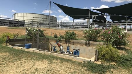 Food plant sees biogas benefits