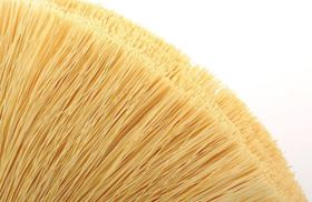 What appears to be a paint brush is a bundle of highly selective membranes made up of multiple cylindrical polymer hollow fibres.