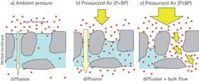 Figure 4. Graphic illustration of the integrity testing principle: When a differential pressure is applied across a completely wetted membrane, the pores are blocked and only low quantities of gas molecules have the chance to pass the membrane by diffusion. When the differential pressure exceeds the bubble point, the wetting liquid is forced out by the biggest pores, leading to an over-proportional increase of the air flow. This again leads to a pressure decrease on the upstream side of the filter which cam be detected by adequate sensors. This behaviour is used for identifying the BP of a membrane.