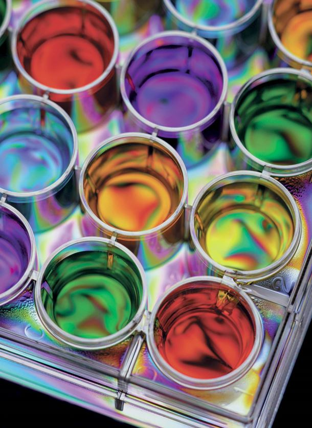 Paints and coatings manufacturers need a filtration solution that will ensure a high quality product.